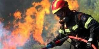 ΈΚΤΑΚΤΟ: Δύο πυρκαγιές σε εξέλιξη – Κινητοποίηση της Πυροσβεστικής