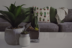 Είδη Σπιτιού / Κήπος / DIY